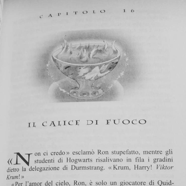 Harry potter e il calice di fuoco.jpg 2.jpg